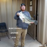 Blake Cockrell